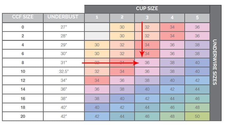 CHOOSING A SIZE AND INCREASING THE CUP SIZE FOR YOUR ...